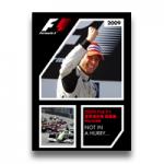 2009 FIA F1世界選手権 総集編